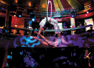 Spiegel Tent - Cirque Dreams® and Dinner